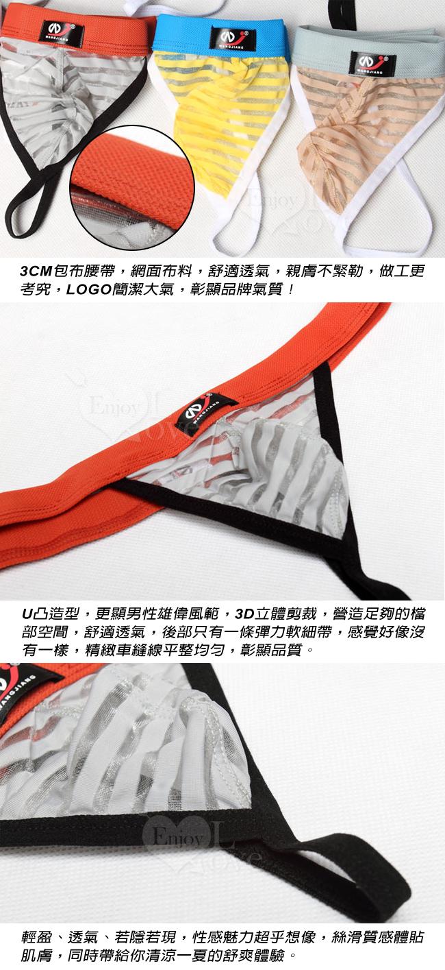 【網將WJ】條紋網紗半透明性感丁字褲﹝藍 L﹞