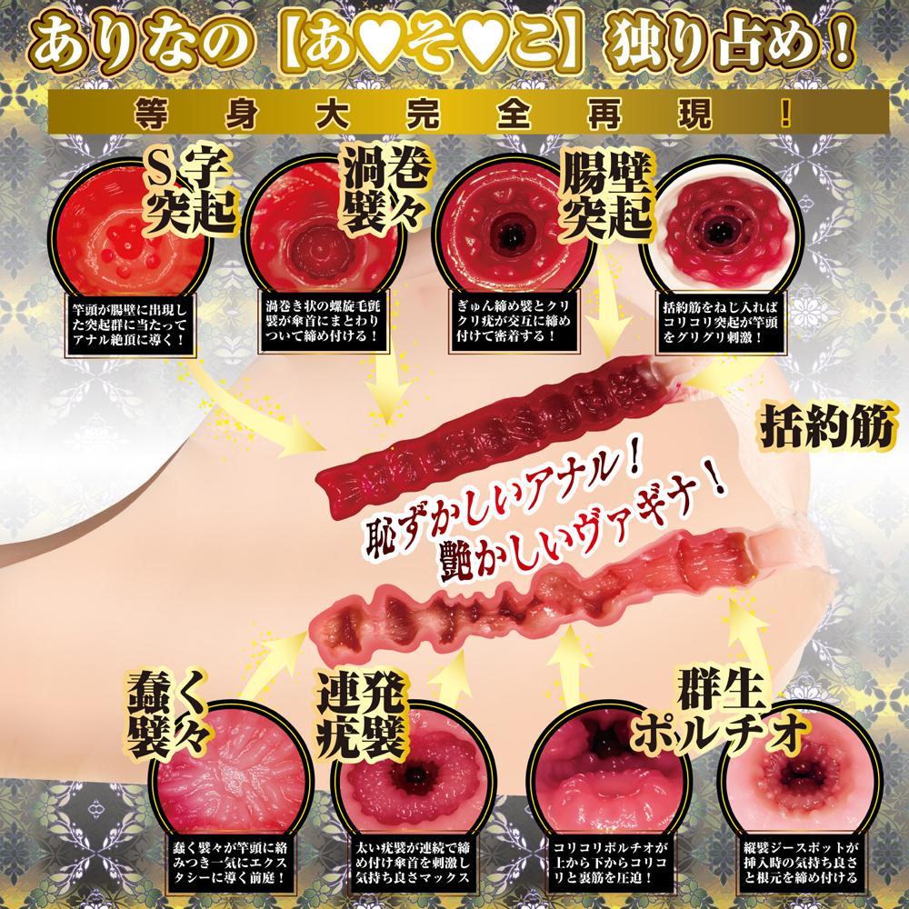 日本NPG 4代目日暮里版真性極上生腰橋本有菜雙穴男用自慰器(7KG)