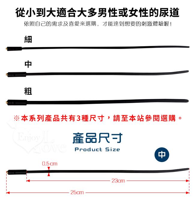 Electric shock 4模式5脈衝電擊組-中﹝5mm硅膠尿道馬眼棒+陰莖睪丸套環﹞